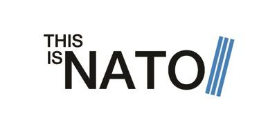 TiN logo - low r, rgb